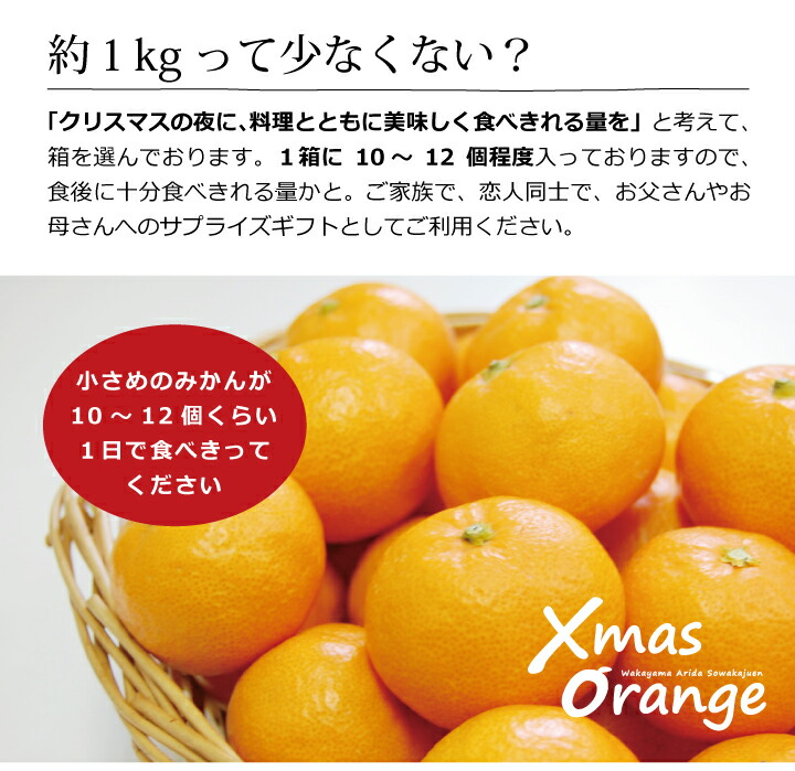 クリスマスオレンジ Xmas Orange