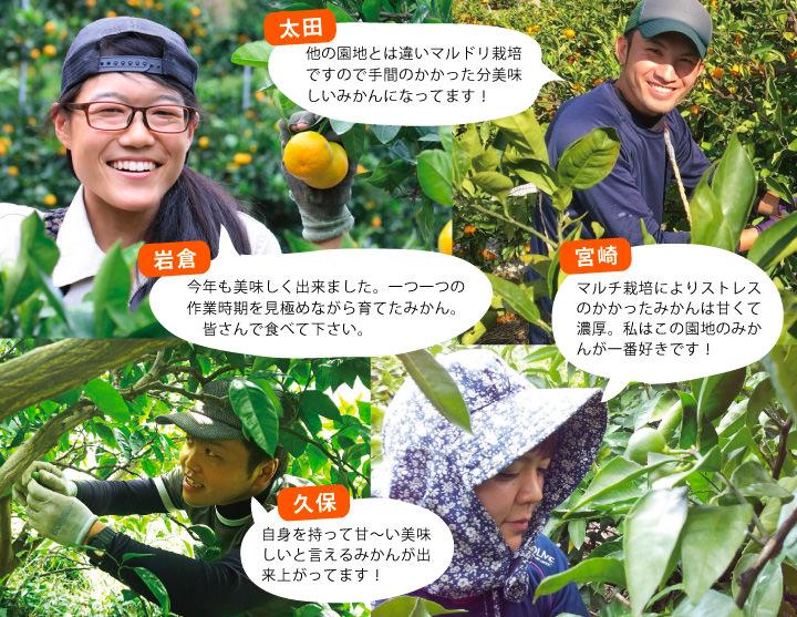 早和果樹園の生産部が育てました