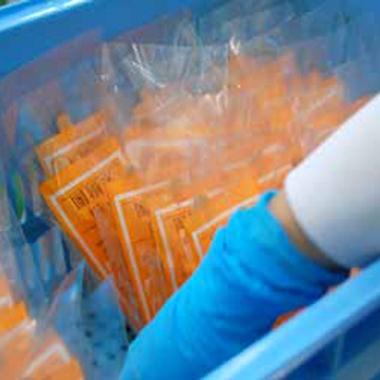 袋に入れて完成→即冷凍庫へ