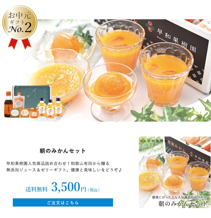 有田みかん100%ジュースのお中元ギフト
