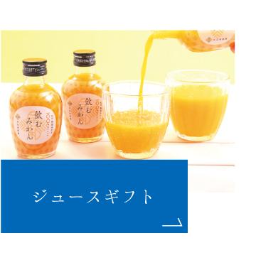 有田みかんジュースギフト